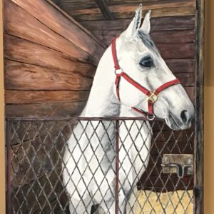 Horse Portrait by Monica Yother