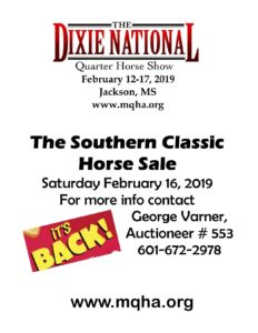 Southern Classic Horse Sale