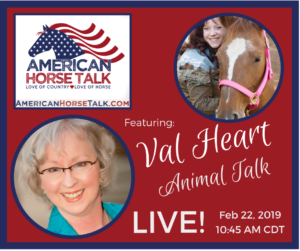 American Horse Talk LIVE:  Val Heart @ American Horse Talk Facebook PAGE